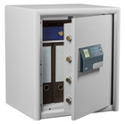 Dual- Safe DS 445 E FP